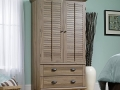 2 Drawer Armoire (in Salt Oak)