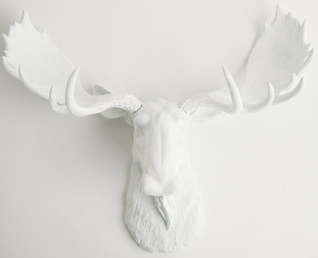 white faux taxidermy multiple styles bachelor on a budget. Black Bedroom Furniture Sets. Home Design Ideas