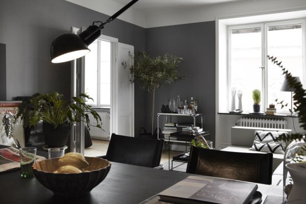 bachelor living room ideas.  Bachelor Pad Living Room Plant 3 Essentials and Ideas on a Budget