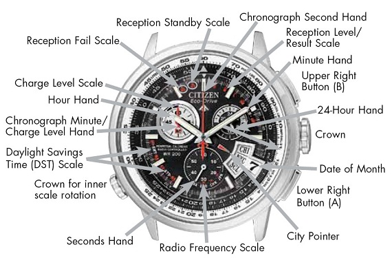 Face Wrist Watch Diagram Illustration Of Wiring Diagram